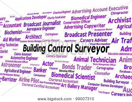 Building Control Surveyor Represents Employee Job And Text