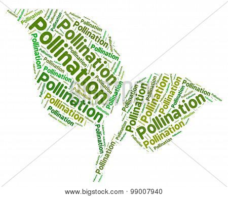 Pollination Word Indicates Procreation Pollinate And Pollen
