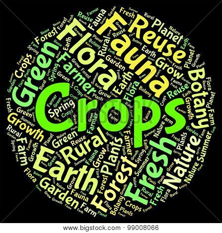 Crops Word Shows Harvests Grains And Grain