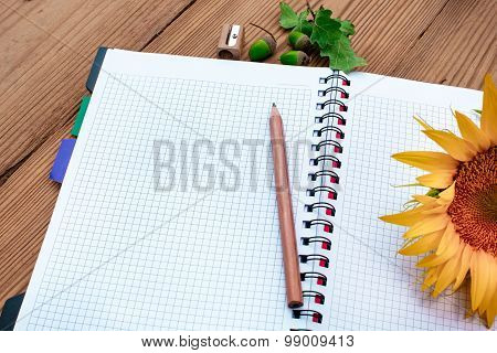 Opened spiral notebook with pencil and sunflower, acorns