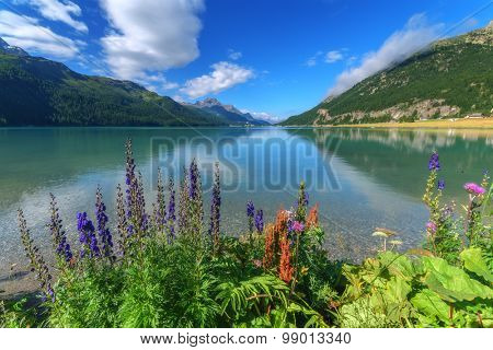 Amazing sunny day at Champferersee lake in the Swiss Alps. Silvaplana village, Switzerland, Europe.