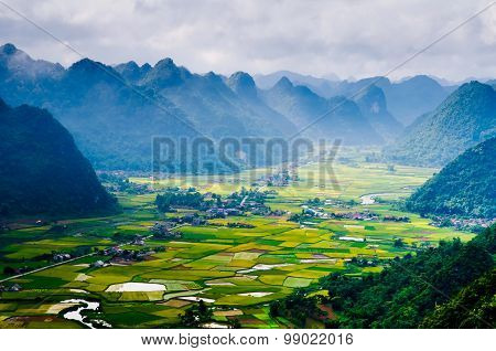 Rice field in valley in Lang Son, Vietnam