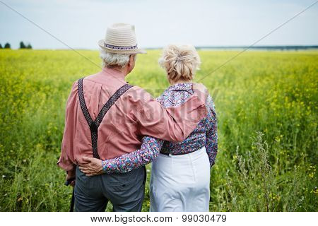 Rear view of senior couple taking a walk in the field