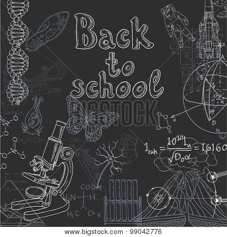 Back To School Doodles On A Blackboard