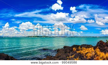 Rangitoto Island, district of Auckland City. New Zealand.