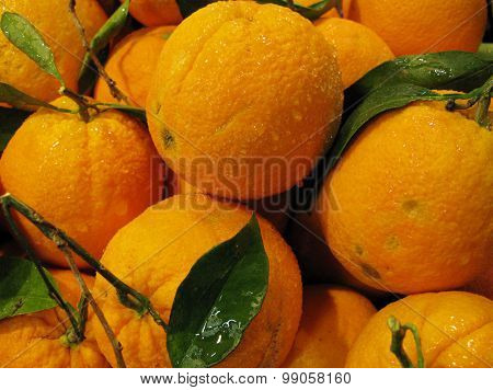 Orange oranges with green leaves
