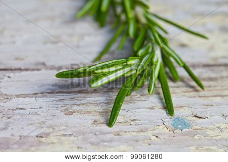 Bunch of fresh rosemary on a wooden background