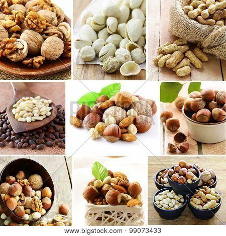 collage mix nuts (almonds, hazelnuts, walnuts, pistachios, peanuts, pine nuts)