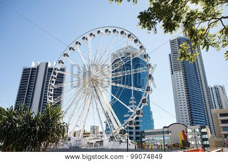 The Ferris wheel on top of the Transit Centre in Surfers Paradise