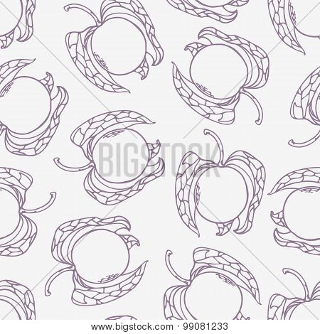 Stylized Seamless Pattern With Outline Style Physalis. Food Background