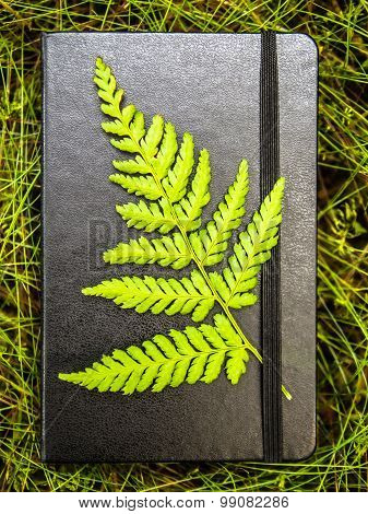 Closed black notebook with a green fern leaf attached