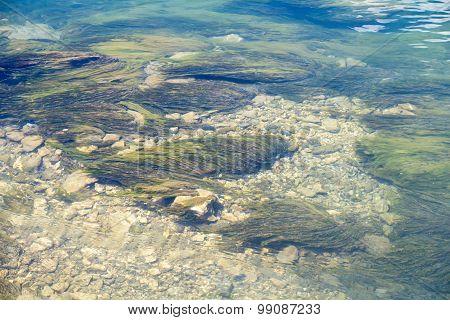 Photos algae on bottom of mountain lake