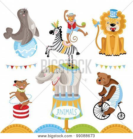 Vector Circus animals perform tricks.