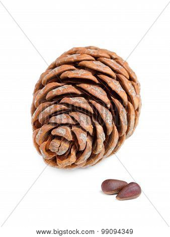 Pinecone With Pine Nuts.