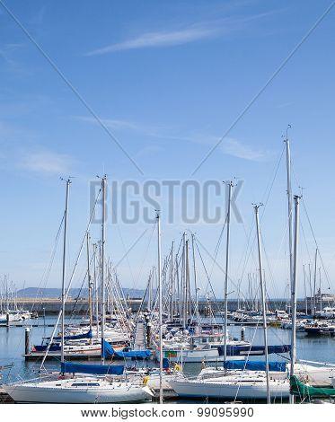 Yachts anchored at the marina