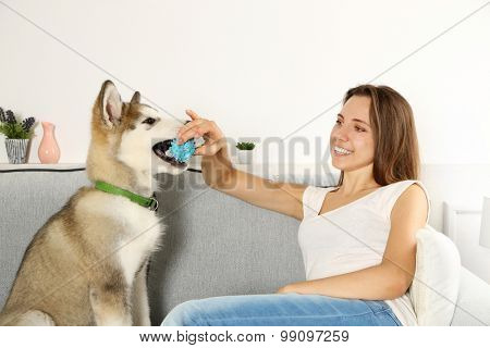 Woman playing with malamute dog on sofa in room