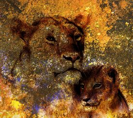 pic of lion  - lion mother and lion cub - JPG