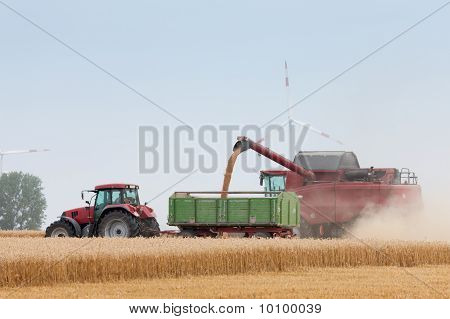 Grain harvest being brought in