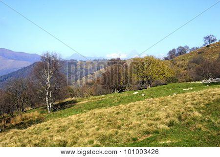 Brianza Panoramic View