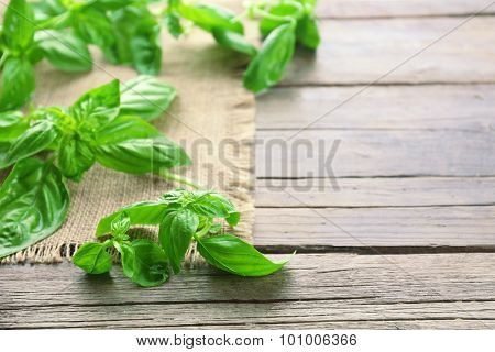 Green fresh basil with sackcloth on table close up