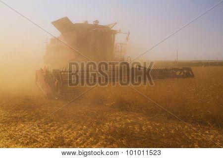 Combine Harvester During Harvesting