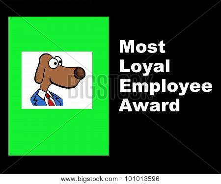 Most Loyal Employee