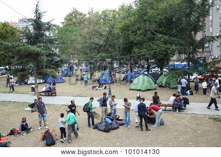 Syrian Immigrants In Belgrade