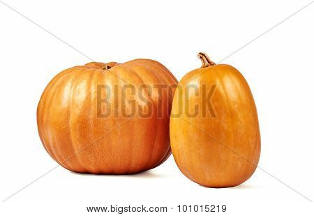 Two Pumpkins