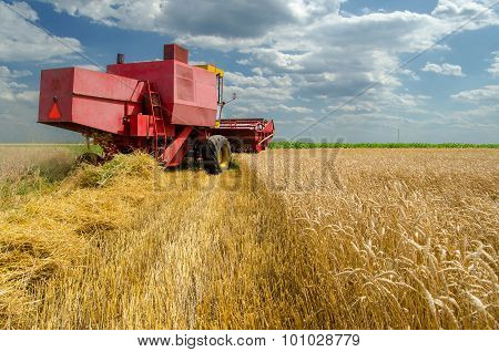 Harvester Combine Harvesting Wheat On Sunny Summer Day