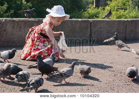 Girl In Dress Feeding Pigeons