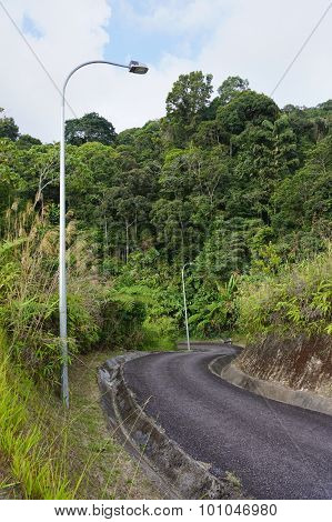 Mountain Road In Cameron Highlands