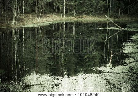 Murky Autumn Forest And Lake, Reflection In Water, Vintage Effect