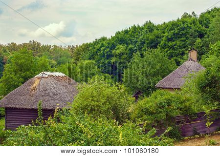 Thatch Ukrainian Hut On The Edge Of The Forest