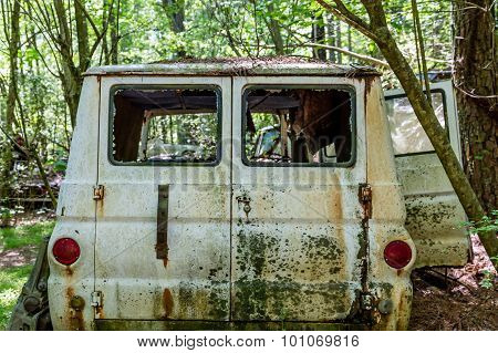 Old White Van In Woods