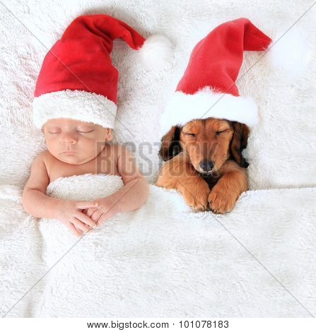 Sleeping Christmas baby and dachshund puppy wearing Santa hats.