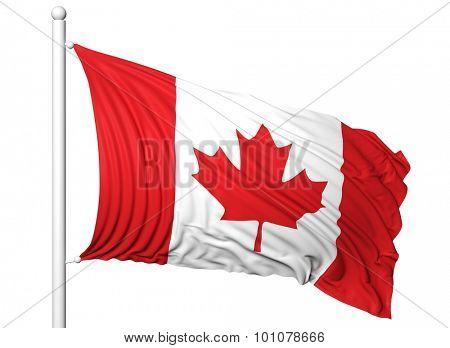 Waving flag of Canada on flagpole, isolated on white background.
