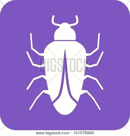 Bug II