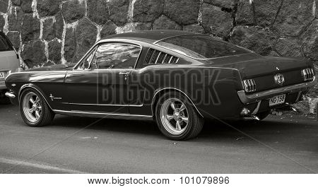 Vintage Ford Mustang 289 Stands Parked