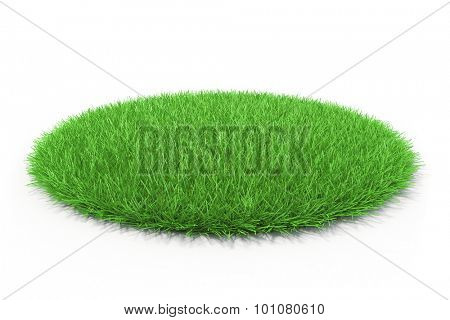 3d fresh green grass on white background