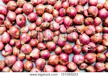 Closeup of old stock of small onions kept in sunlight for dying on a plain background