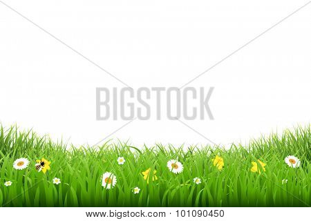 Grass Border With Flowers With Gradient Mesh, Vector Illustration