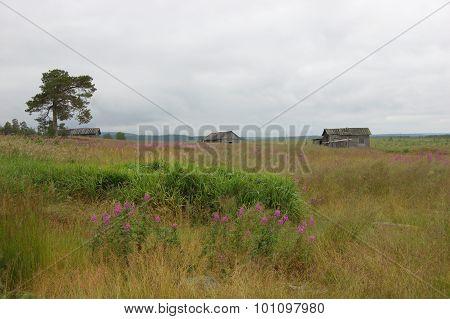 Abandoned village on the Kola Peninsula, Russia.