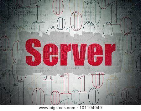 Web design concept: Server on Digital Paper background