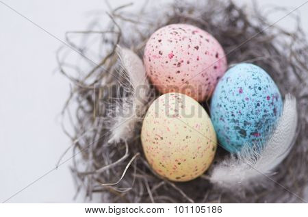 Colourful speckled eggs with feathers in a nest shot overhead for easter celebrations, table decorations