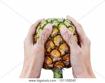 Pineapple Handle Isolate White Background With Clipping Path