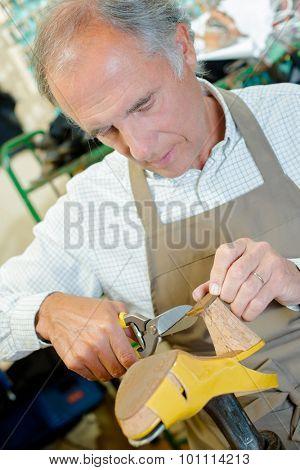 Experienced shoemaker hard at work