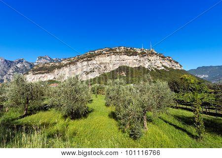 Torbole Near Garda Lake - Trentino Italy