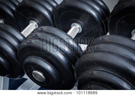 dumbbell close up in a sports club