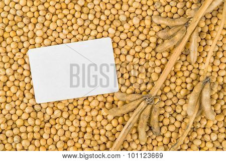 Soybean Plant, Pods And Beans With Business Card