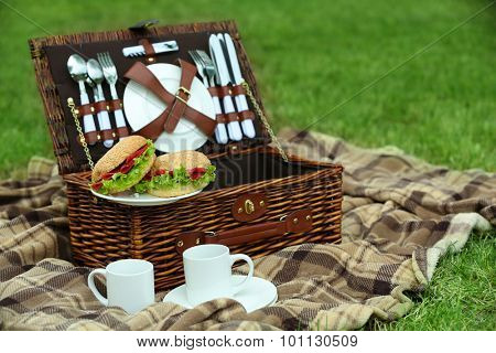 Wicker picnic basket, tasty sandwiches, tea cups  and plaid on green grass, outdoors
